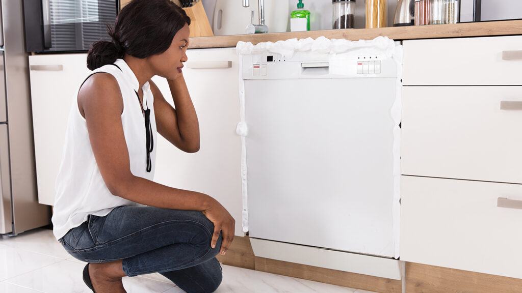 Appliance Repair in King City