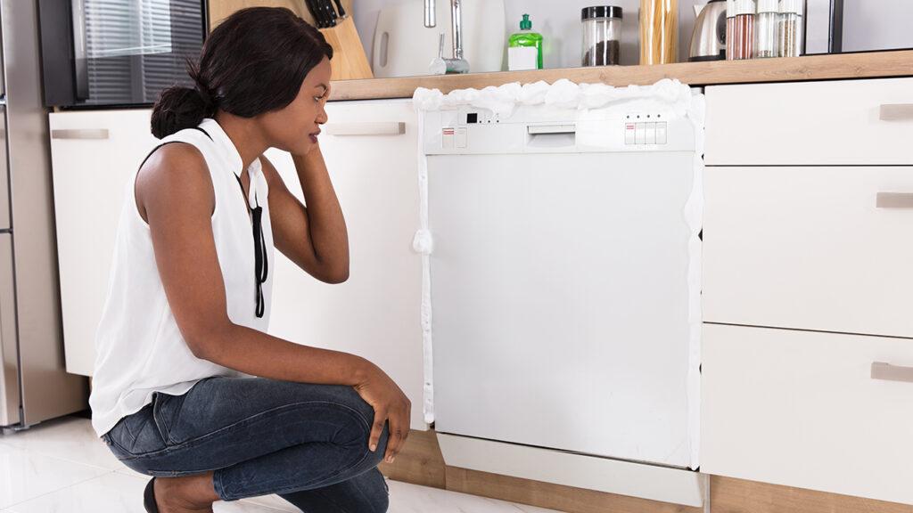 Your Dishwasher Stinks
