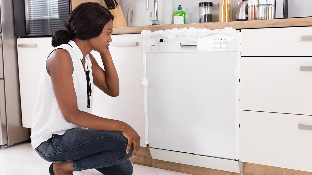 Common Dishwasher Repair